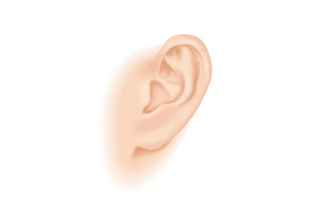 耳介鍼治療
